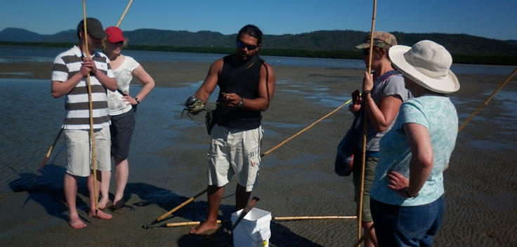 Eat your catch on the beach near the Daintree