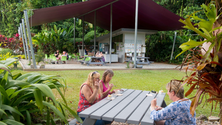 Enjoy a BBQ lunch in the Daintree Cape Tribulation rainforest