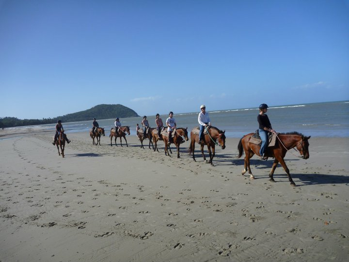Horse Rides On The Beach Cape Tribulation