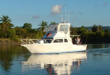 1 Day Private Charter Heavy Tackle  from Port Douglas
