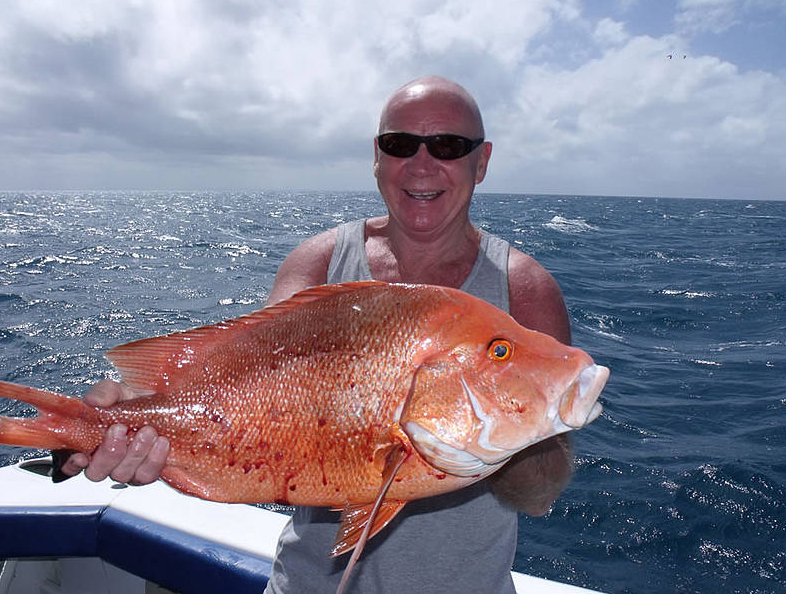 Great barrier reef fishing tour cairns departure for Fish tales charters