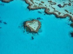 Heart Reef in the Whitsundays