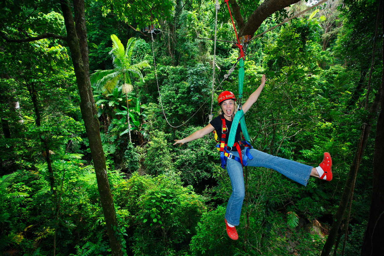 Zip lining through the rainforest Daintree Rainforest & Daintree Rainforest Tour | Jungle Surfing Zip Lining Thrill Ride