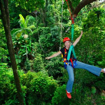 Zip lining through the rainforest, Daintree Rainforest