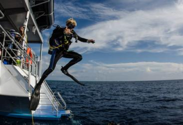 Jumping overboard into the sea on the Great Barrier Reef