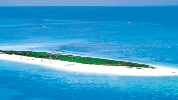 Aerial view of Michaelmas Cay