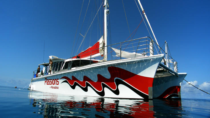 Great Barrier Reef tour - New boat, dive & snorkel