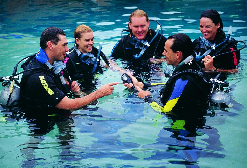 Learn to Scuba Dive   Brisbane Dive Trips & PADI Courses