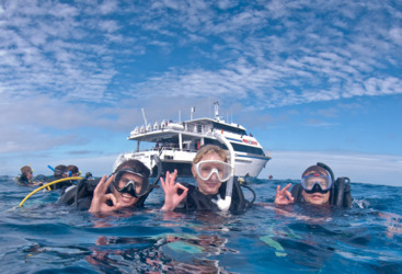 Introductory diving with guides
