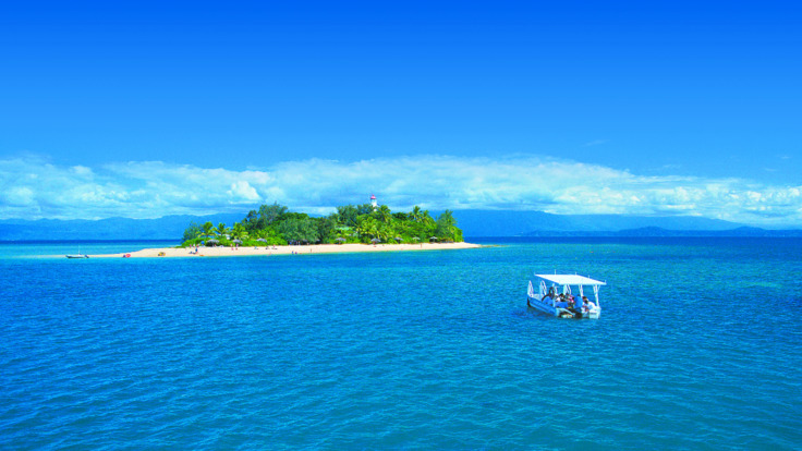 Take an island trip to Low Isles to snorkel with turtles from Port Douglas