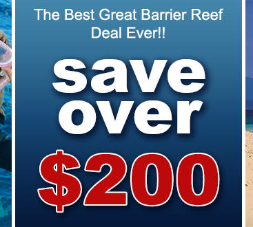 Save over $200 when booking 3 Day Ultimate Reef Pass!!!
