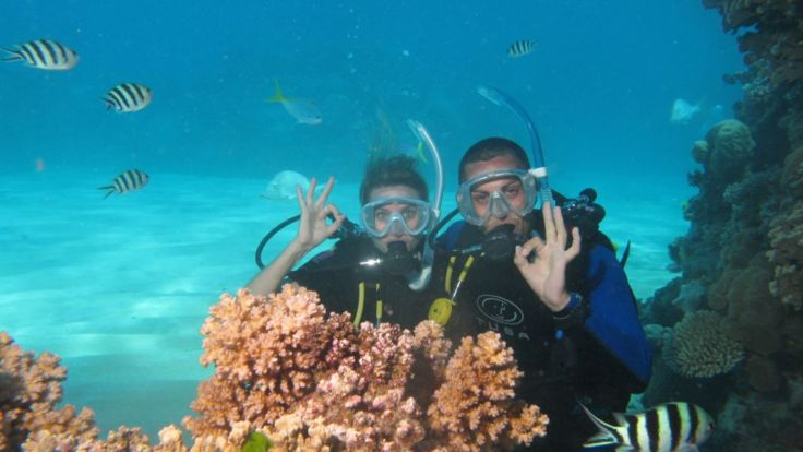 Upgrade to include scuba diving on your Ultimate Reef Pass.