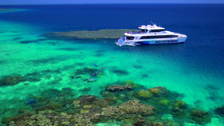 Depart Port Douglas and dive & snorkel 3 reefs in one day - Great Barrier Reef Australia