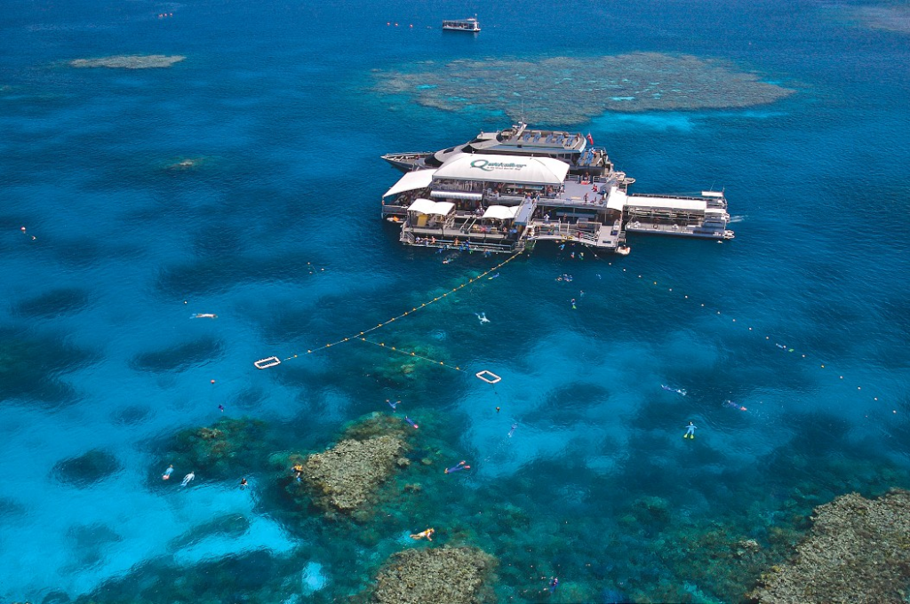Port Douglas Reef Tours | Snorkel & Dive Trips | Barrier