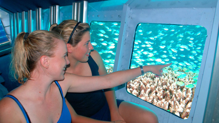 Underwater observatory tour on the Great Barrier Reef - great for non-swimmers