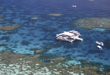 Quicksilver Pontoon, Agincourt Reef