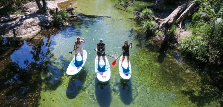 Stand Up Paddle Boarding on Mossman River, Daintree