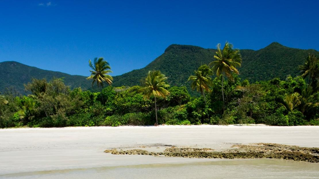 Cow Bay, Tropical North Queensland